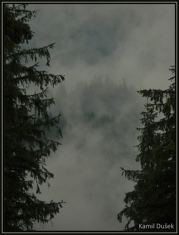 0168.jpg